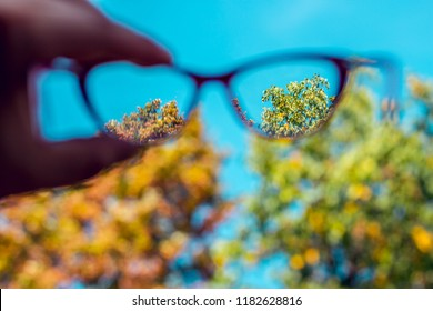 Eyeglasses held in air to spot the sight difference of someone affected by Myopia