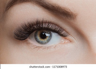 Eyelash extension procedure. Beautiful female eyes with long lashes, closeup