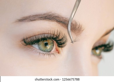 Eyelash Extension Procedure. Close up view of beautiful green female eye with long eyelashes. Stylist holding tweezers, tongs and making lengthening lashes for girl in a beauty salon. Beauty Concept.