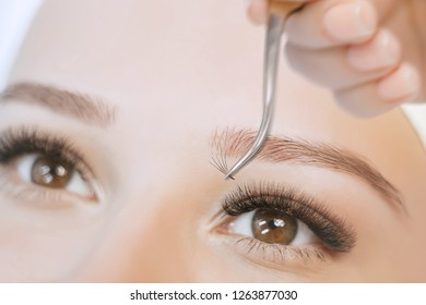 Eyelash Extension Procedure. Close up view of beautiful brown female eyes with long eyelashes. Stylist holding tweezers, tongs and making lengthening lashes for girl in a beauty salon. Beauty Concept.