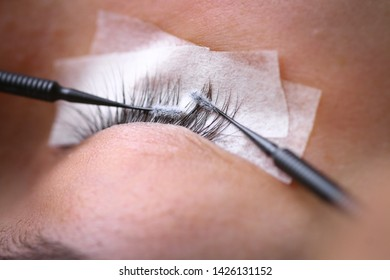 Eyelash extension procedure, woman eye with Long eyelashes