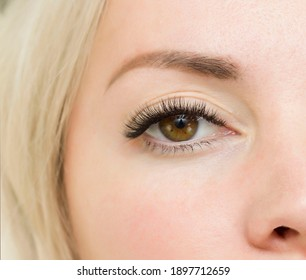 Eyelash Extension Procedure. Woman Eye with Long Blue Eyelashes. Close up, selective focus.