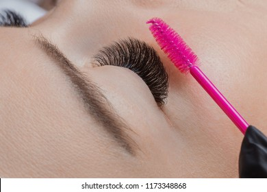 Eyelash extension procedure. Woman master combs lashes 5d
