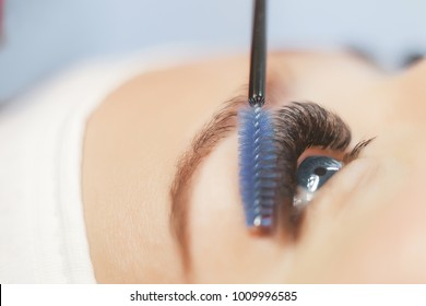 Eyelash Extension Procedure.Close up view of beautiful blue Woman Eye with Long Eyelashes. Stylist holding brush and making lengthening lashes for girl in a beauty salon.