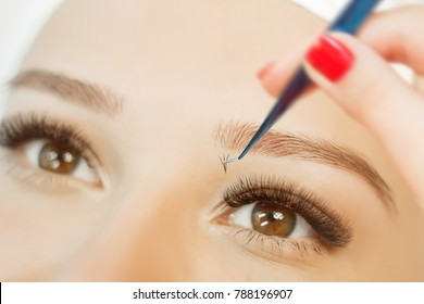 Eyelash Extension Procedure.Close up view of beautiful brown Woman Eye with Long Eyelashes. Stylist holding tweezers, tongs and making lengthening lashes for girl in a beauty salon.
