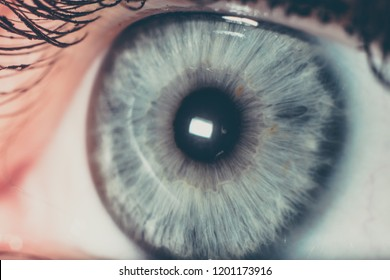 eyes close up macro blue brown iris dark proxy photography