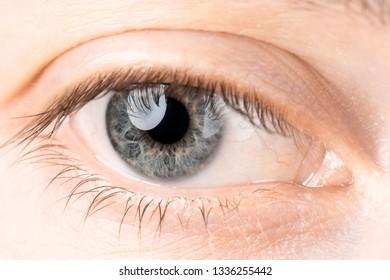 Eyes close up man