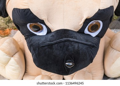 Eyes and Nose of Over-sized Stuffed Puppy Dog