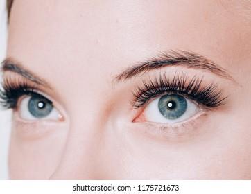 Eyes woman closeup macro lashes