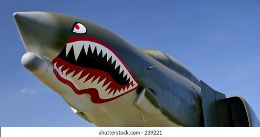 F-4 Phantom nose art. Teeth