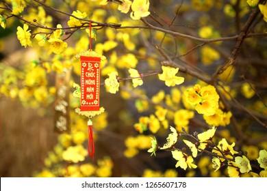Fabric flowers (Ochna flower) - Decoration in Lunar New Year holidays