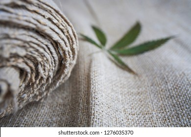 Fabric made from hemp . Cannabis fiber and leaf