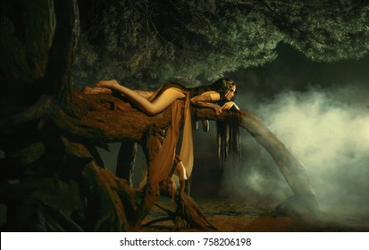 A fabulous, forest nymph with long hair lies on a tree branch with an aggressive look. Background dark night and fog. Mythical character of Gian