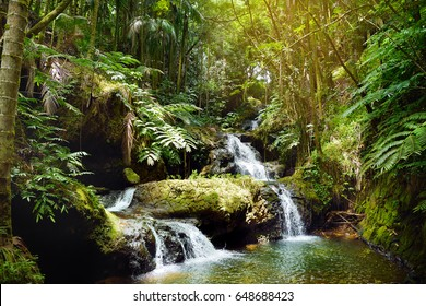 Fabulous Onomea Falls located in Hawaii Tropical Botanical Garden on the Big Island of Hawaii, USA
