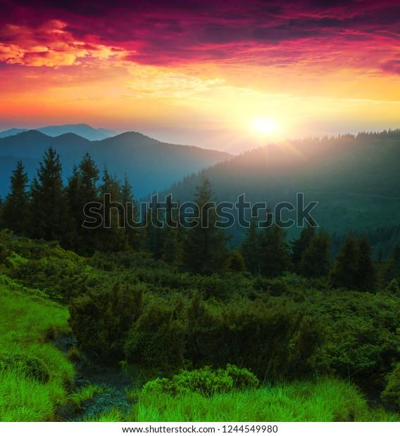 стоковая фотография Fabulous Summer Dawn Landscape