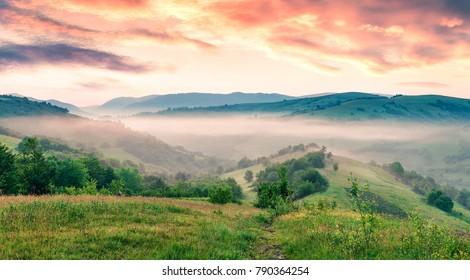 Fabulous summer sunrise in Carpathian mountains. Misty morning scene of green mountain valley, Transcarpathian, Rika village location, Ukraine, Europe. Beauty of nature concept background.