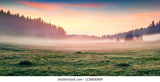 Fabulous summer sunrise in Durmitor Nacionalni Park. Panoramic foggy scene of Montenegro countryside, Zabljak town location. Beautiful world of Mediterranean countries. Traveling concept background.