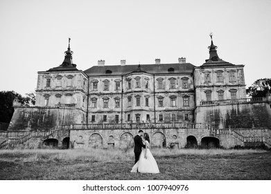 Fabulous wedding couple posing in front of an old medieval castle in the countryside on a sunny day. Black and white photo.