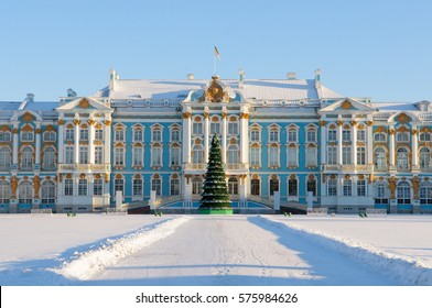 The facade of the Catherine Palace with Christmas tree in front of the main entrance. Tsarskoye Selo (Pushkin town ). A suburb of St. Petersburg. Russia