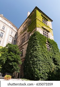 Facade and green ivy
