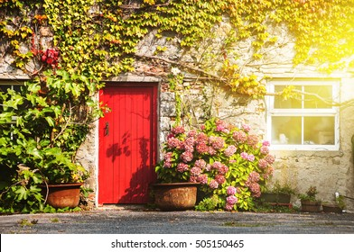 Facade of a house in Galway, Ireland. Sunlight through the window and red door. Plant on the wall
