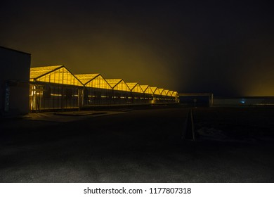 Facade and landscape of the greenhouse at night. The glowing roof of the hothouse at dusk