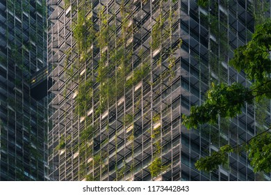 The facade of a modern skyscraper covered with green plants
