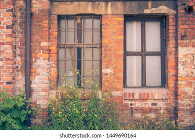 Facade of an old brick house with two blind windows. Yellow wild flowers bloom in front of the house. Brownfield, retro look.