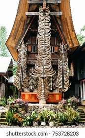 Facade of traditional torajan building tongkonan with a lot of buffalo horns. Tana Toraja, Rantepao, Sulawesi, Indonesia