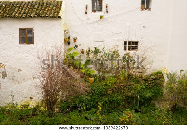 facade of a white building with plants, Andalusia, Spain