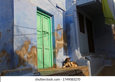Facades, windows and door of traditional houses in old city of Jodhpur. Blue city. Rajasthan, India
