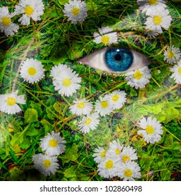 Face with blue eye and painted oxeye daisy