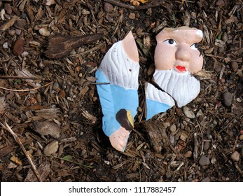 face of a broken garden gnome lying on the ground