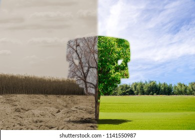 Face environment ecology concept change tree forest drought and forest refreshing the