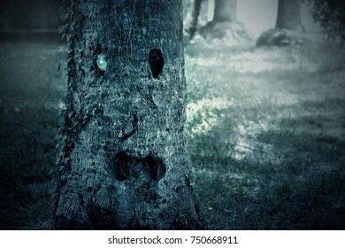 Face on the tree trunk in the park at dark