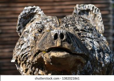 Face of a Wooden Bear Statue