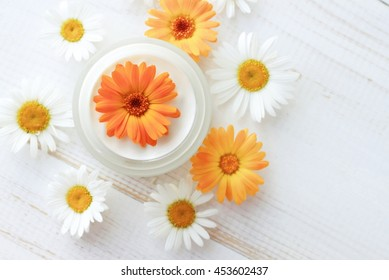 Facial body skin care cream, fresh calendula, chamomile flowers. Herbal cosmetic products. White wooden background, top view.