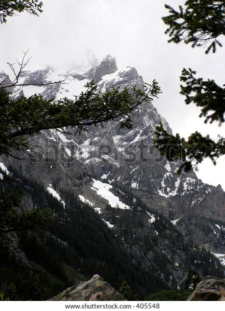 facing Mount on Grand Teton Park, Wyoming on a hiking trail.