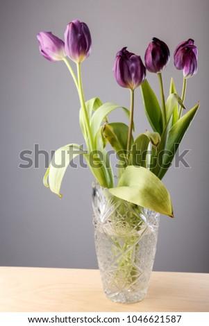 Faded Purple Tulips Crystal Vase Stock Photo Edit Now 1046621587