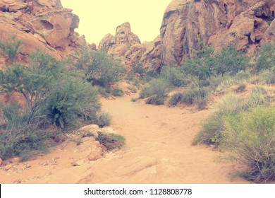 Faded Vintage film look Landscape shot of lonely hiking path in Valley of Fire Nevada USA
