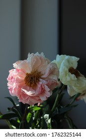 fading peonies in a vase