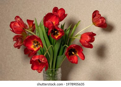 Fading red tulips on pastel brown background. bouquet of red tulips on braun textured background. - Shutterstock ID 1978905635