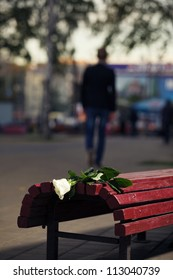 Failed dating. Man walks away. Close up white broken rose on the bench.