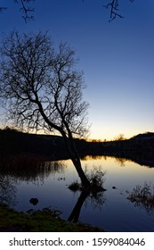 The faint golden light of a Christmas sunset over Clunie Loch with the long reflections of trees on the still water of the lake.