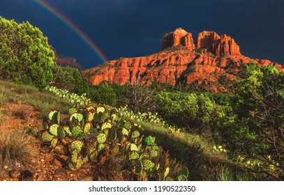A faint rainbow appears over Cathedral Rock and the surrounding prickly pear cacti after a summer thunderstorm blows over.