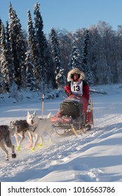 FAIRBANKS, ALASKA - FEBRUARY 3, 2018: Race veteran Laura Neese, from McMillan, MI, on the Chena River during the 2018 Yukon Quest.
