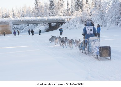 FAIRBANKS, ALASKA - FEBRUARY 3, 2018: Race veteran Paige Drobny, from Ester, AK, nears the Nordale Bridge during the 2018 Yukon Quest.