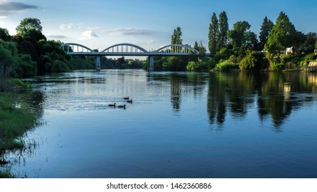 The Fairfield bridge on the Waikato River in Hamilton city, NZ. Looking towards the bridge with ducks on the river and beautiful tree reflections in the water.