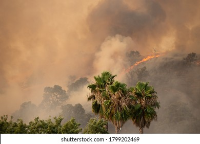 Fairfield, California / USA - August 19 2020: The LNU Lightning Complex Fires burn through a neighborhood forcing residents to evacuate.