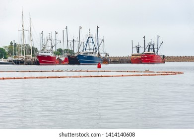Fairhaven, Massachusetts, USA - June 2, 2019: Canada Geese, spill containment boom and commercial fishing vessels docked on Fairhaven waterfront on overcast morning